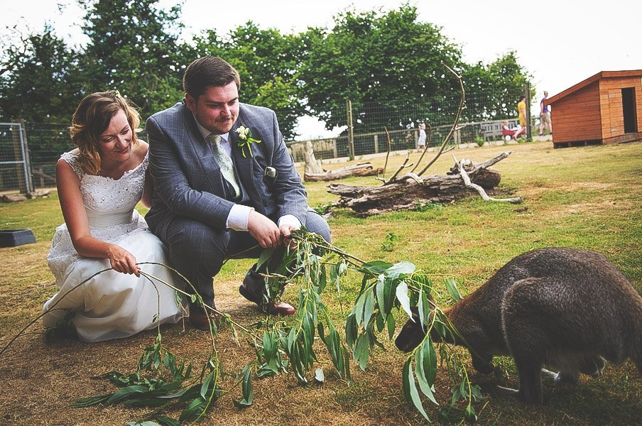 Yorkshire Wildlife Park Wedding, Doncaster - Nathan M Photography - 1